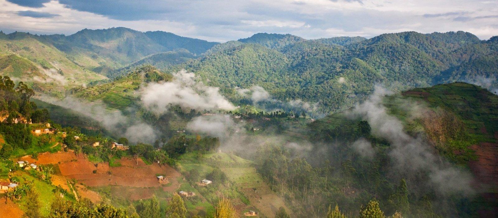 Destination Uganda Safari - Bwindi Impenetrable Forest